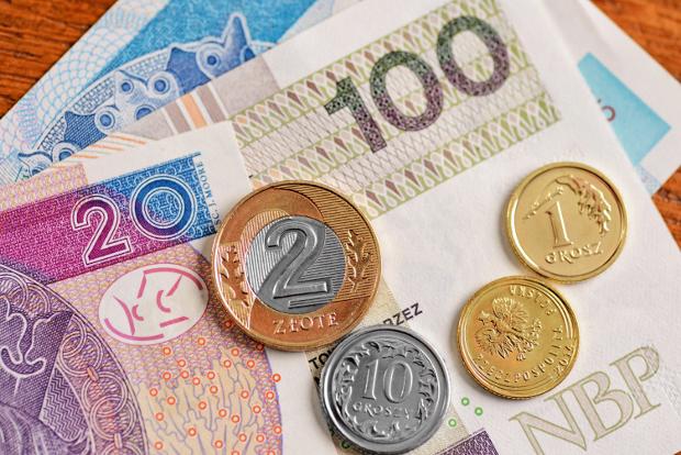 Lenkijos zlotų rinkimai Centrinio banko ataskaitose